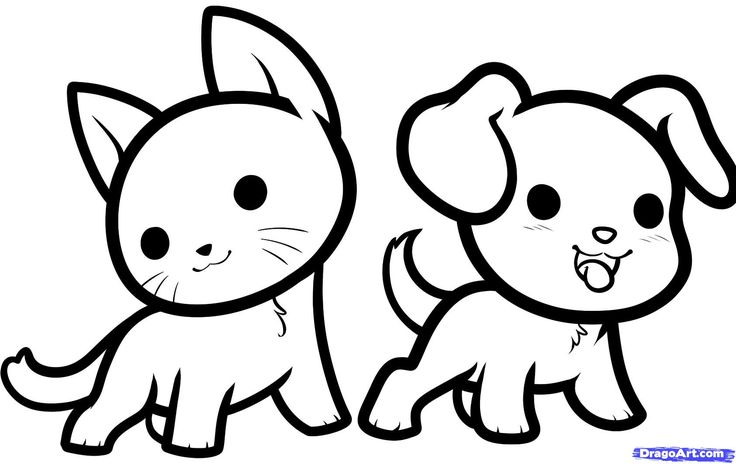 кот и пёс 4