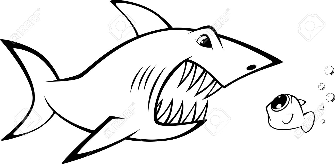 акула рисунок 2