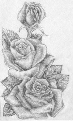 рисунок розы 5
