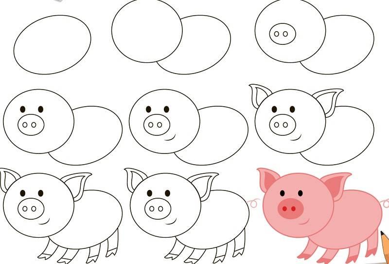 свинью рисовать поэтапно 2