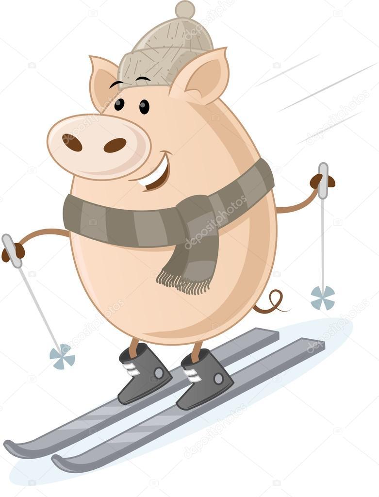 свинья на лыжах