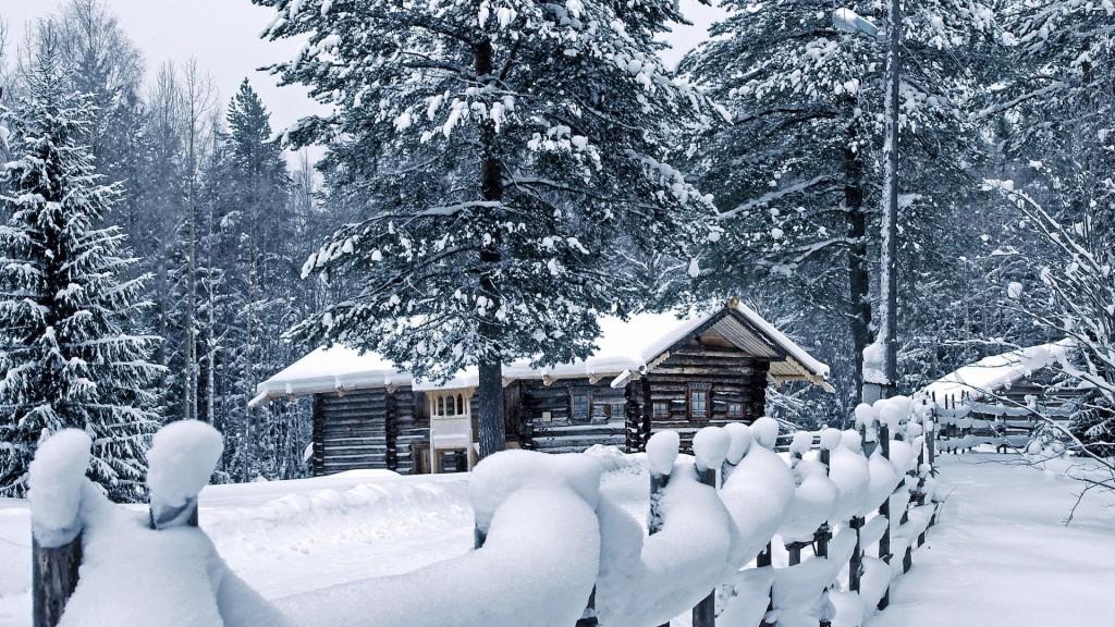 зимний лес 12