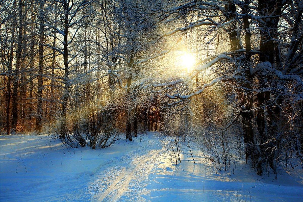 зимнее солнце 2