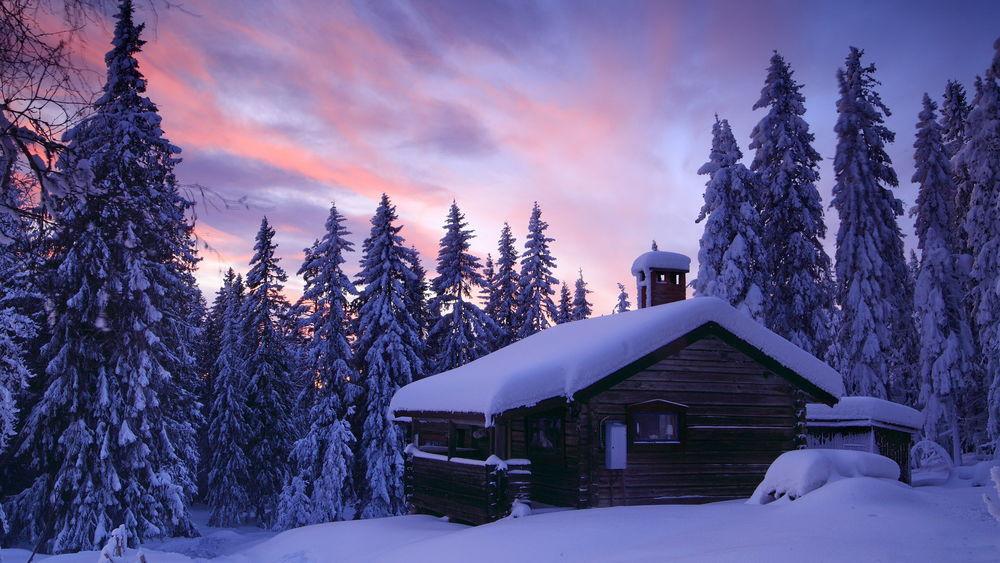 зимний лес 2