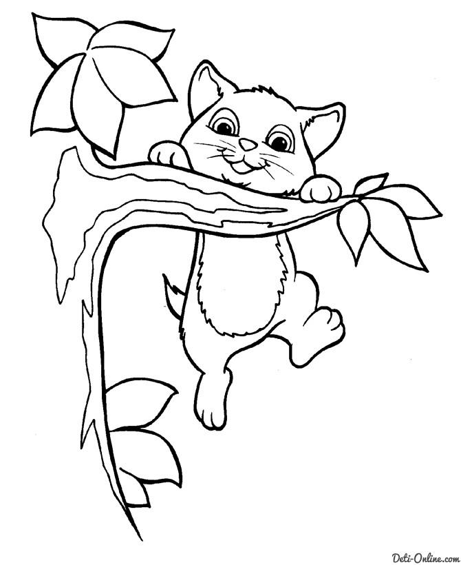 котёнок раскраска