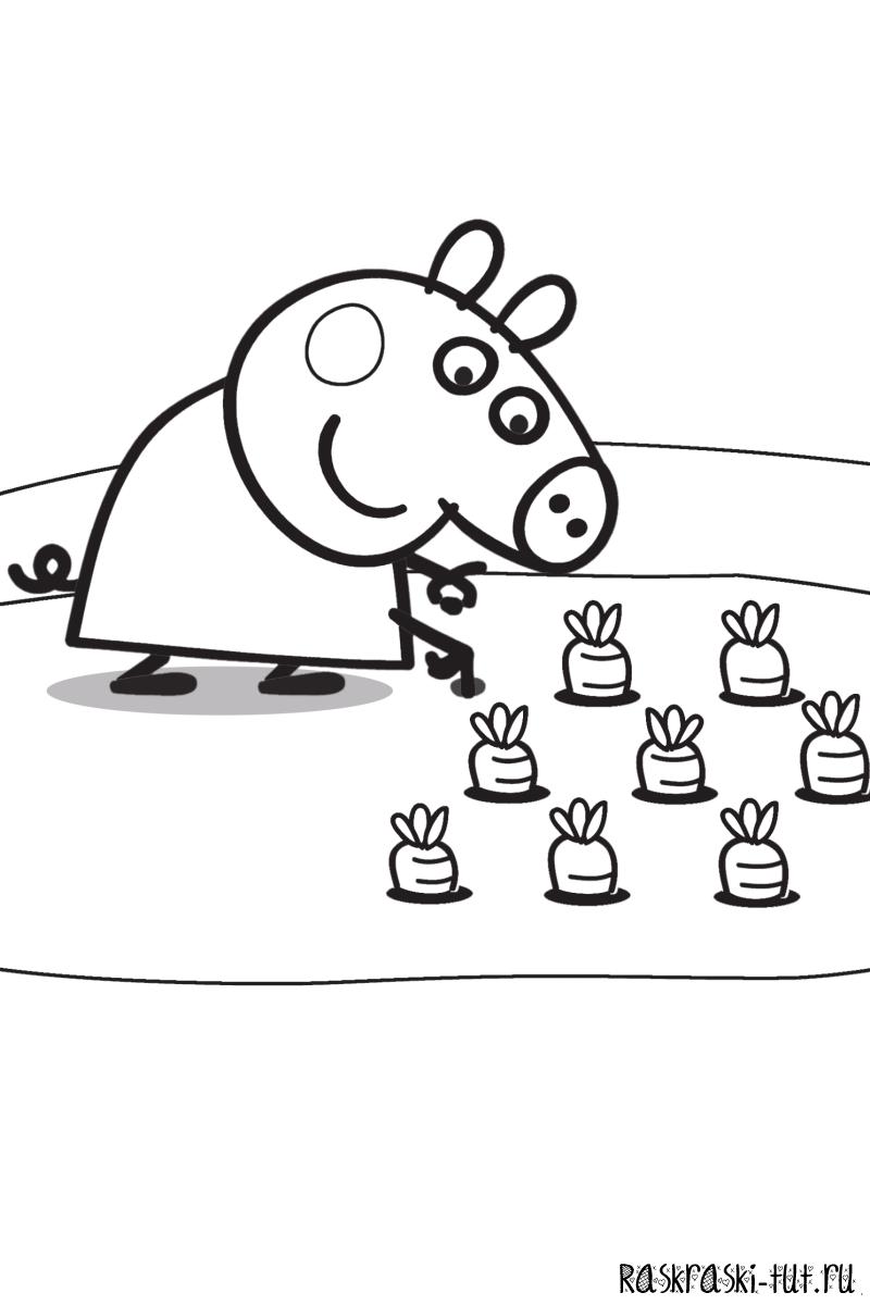 Свинка Пеппа 12