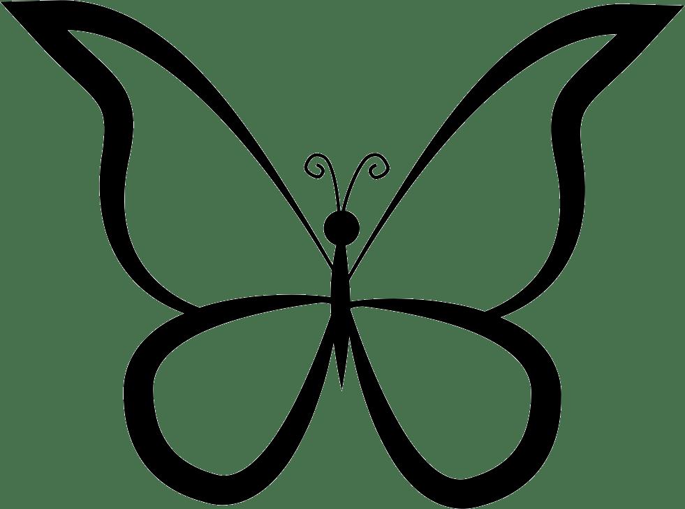 бабочка контур 2