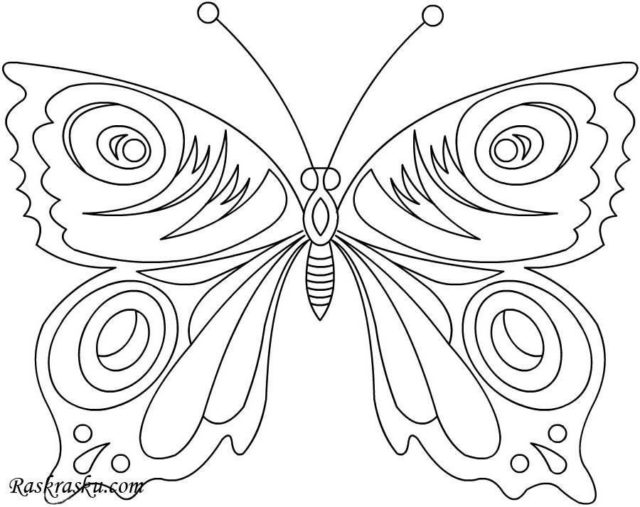 крылья бабочки раскраска