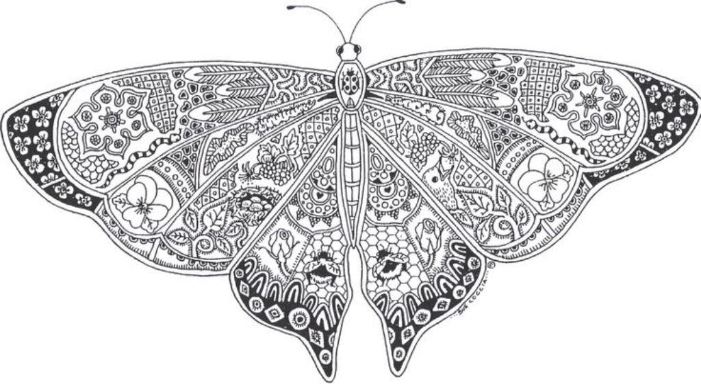 бабочка раскраска антистресс