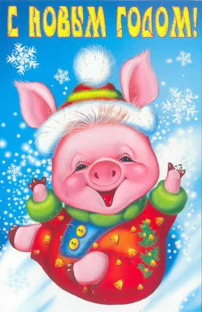 Новогодняя открытка свинка