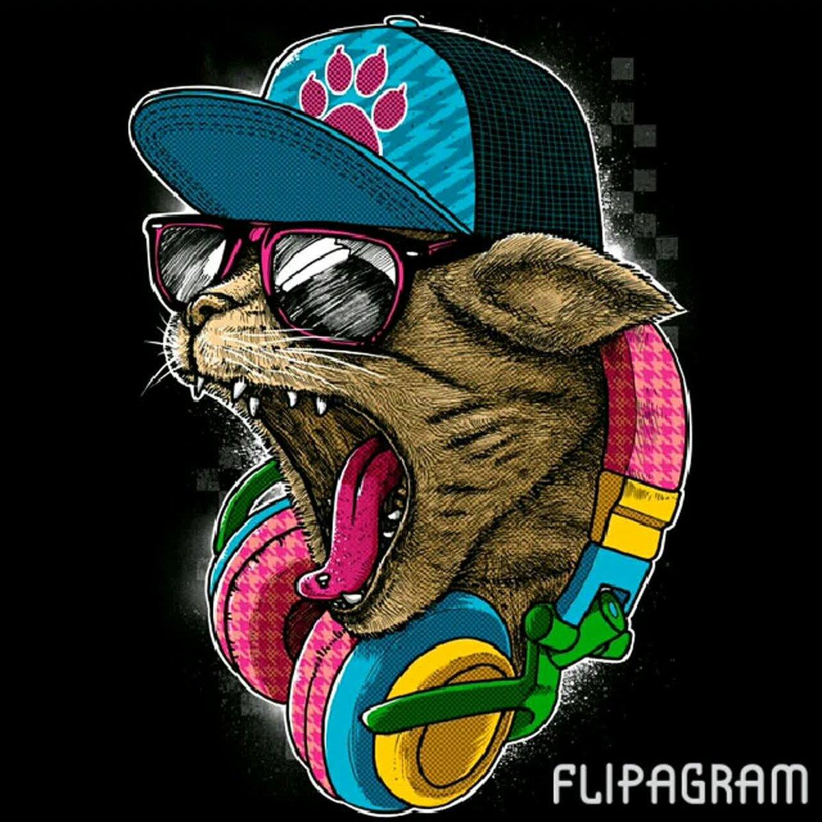 крутой кот 2