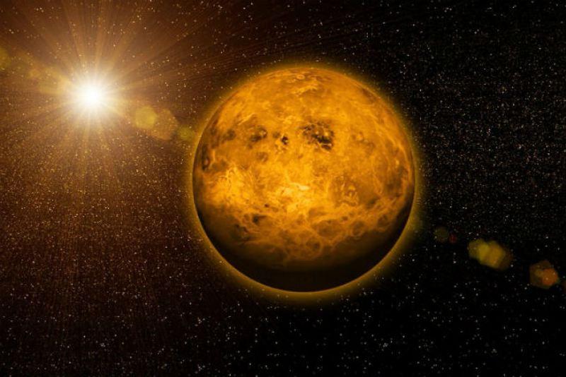 фото Венера
