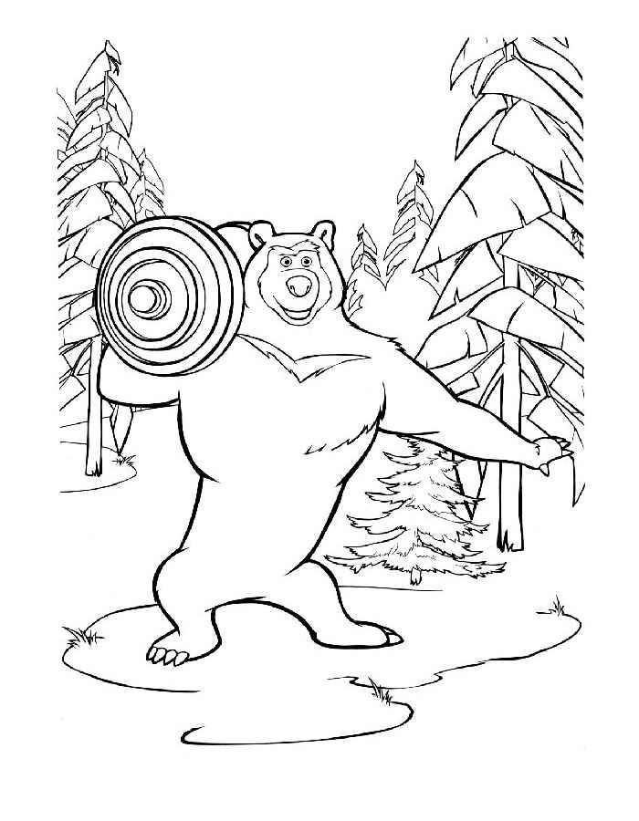 Раскраска медведь 5