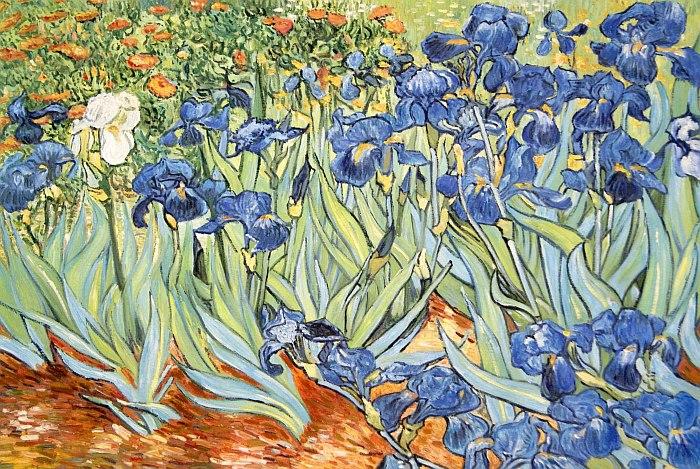 Ирисы ван Гог