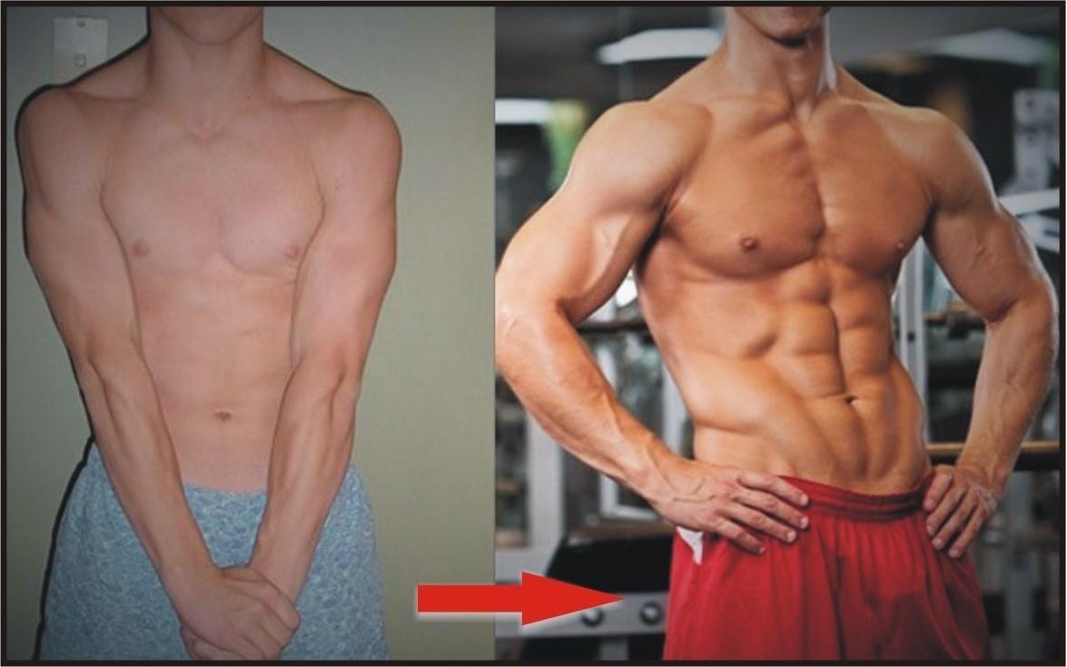 Мышечная масса до и после