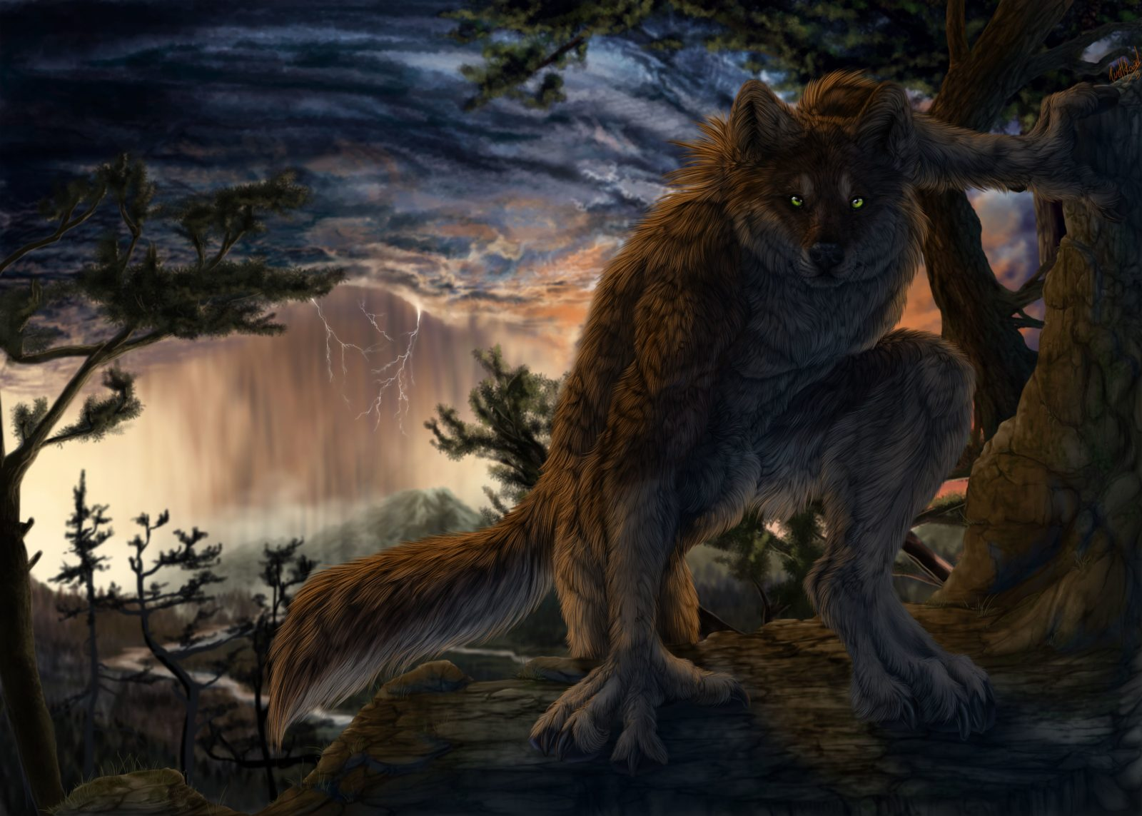 волк оборотень