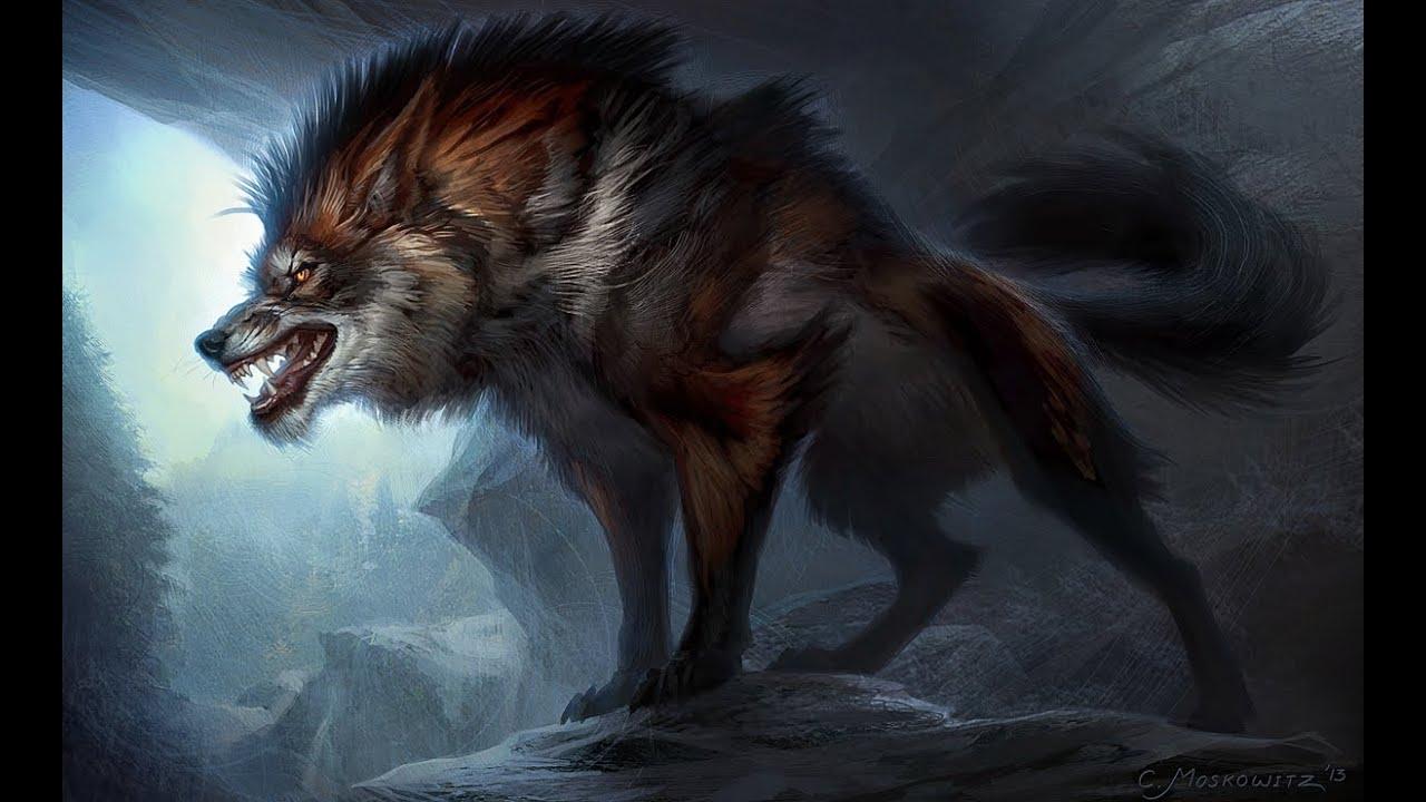 Волк оборотень 3