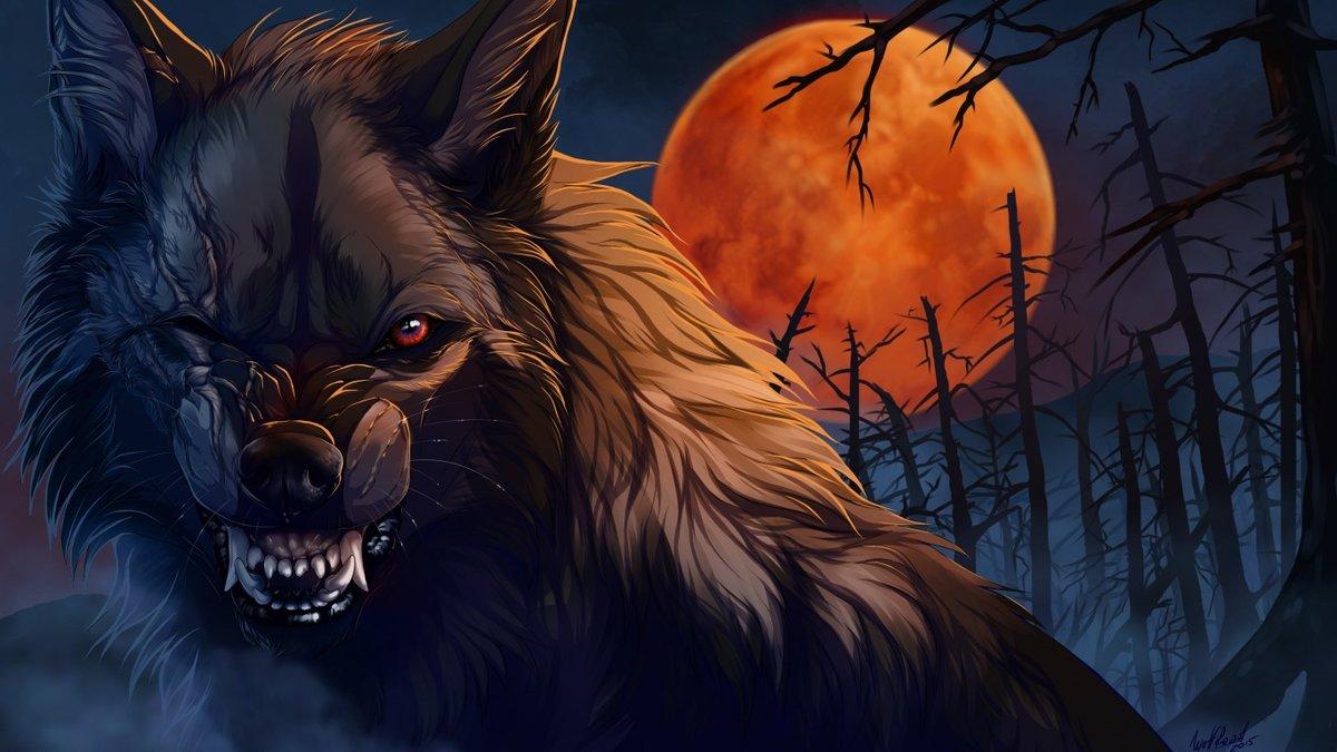 волк оборотень 22