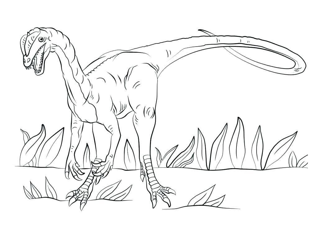 Раскраска брахиозавр