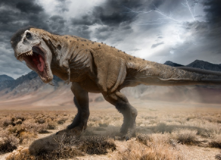 тарбозавр фото