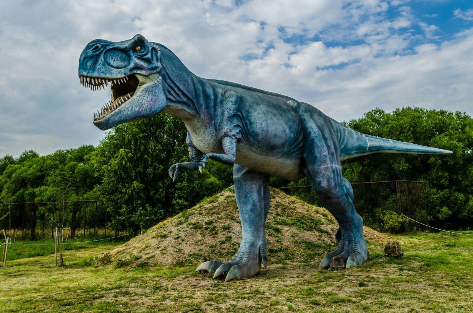 тираннозавр фото 5