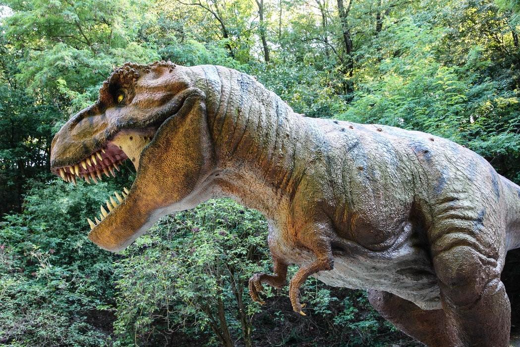 тираннозавр фото 88