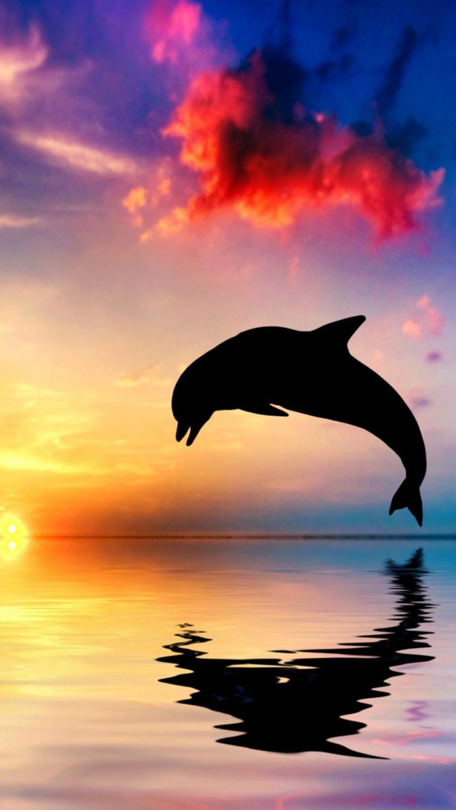 море с дельфином