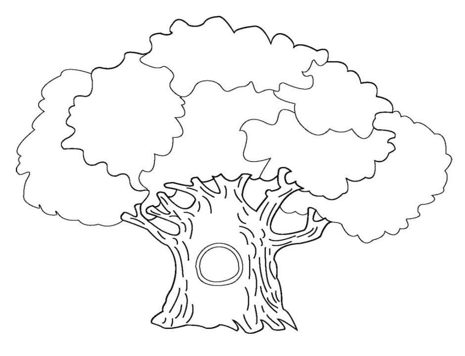 Раскраска дуб 3