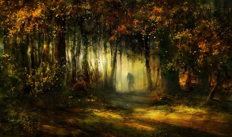 Таинственный лес 556