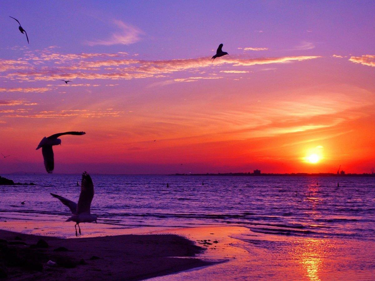 Закат на море 33