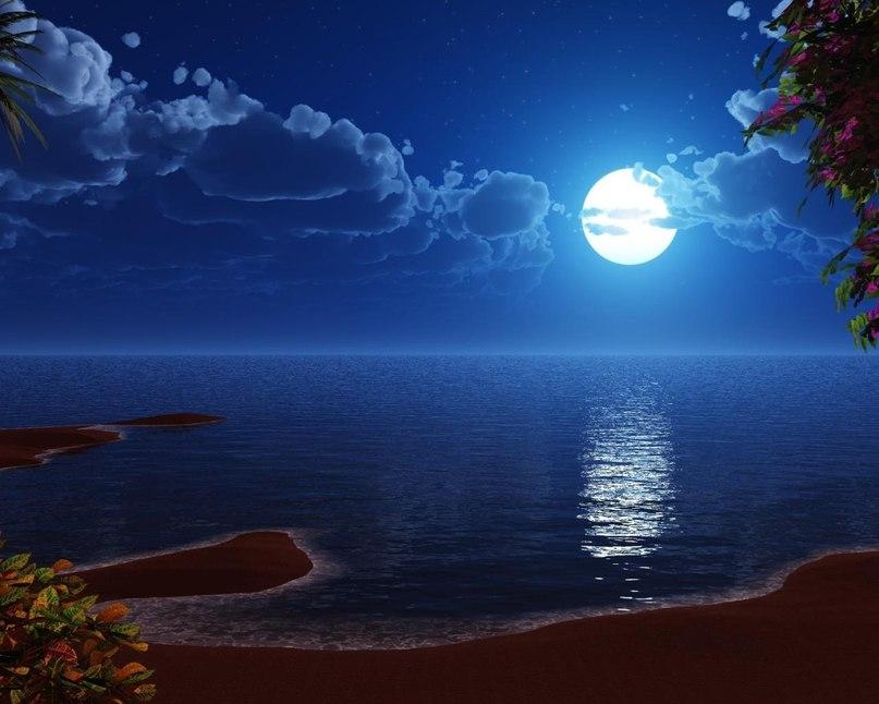 море ночное фото