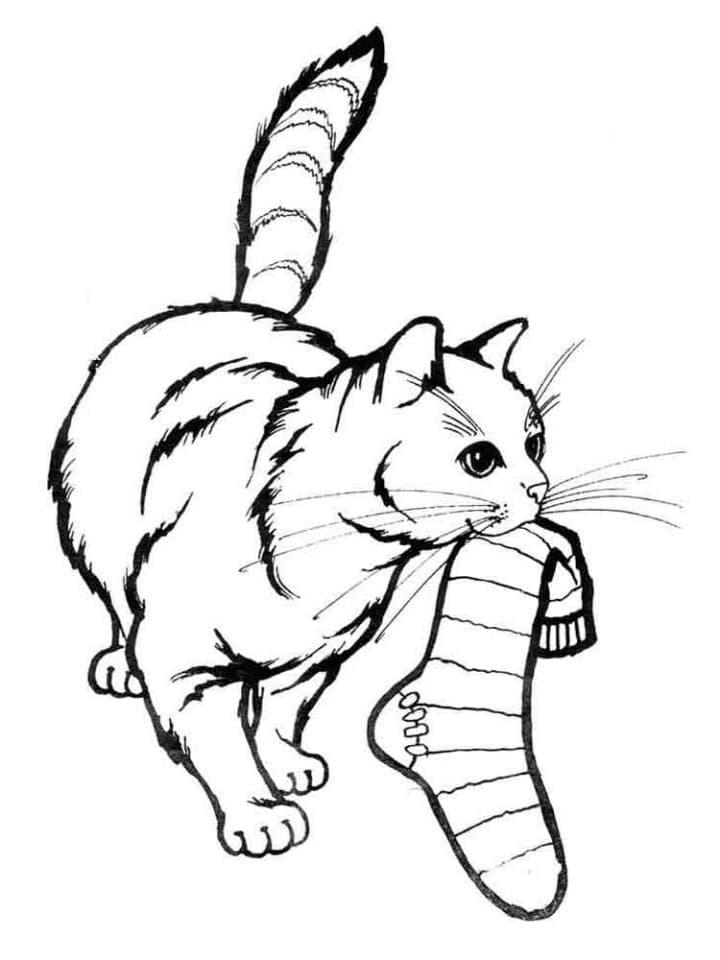 раскраска кошка 79