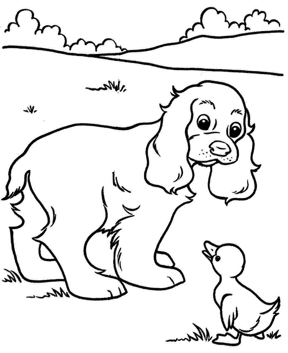Раскраска собака 81