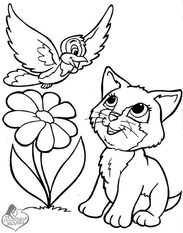 раскраска котёнок 11