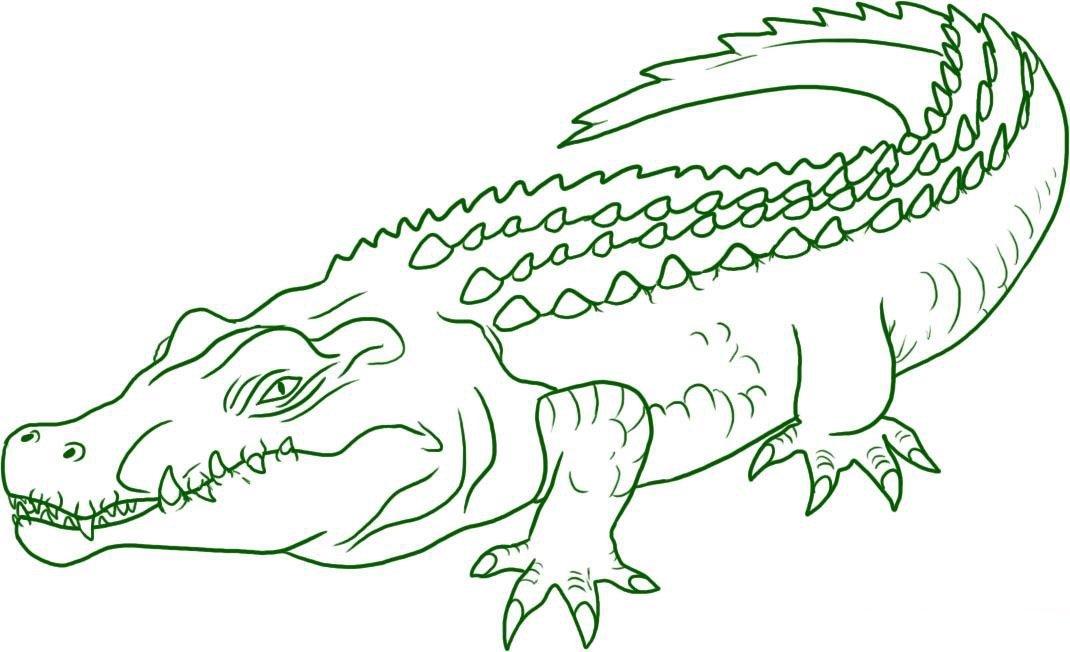 Раскраска крокодил 7