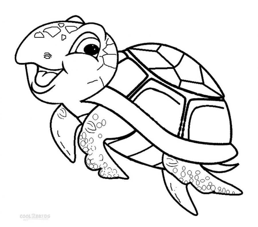 раскраска черепаха 70