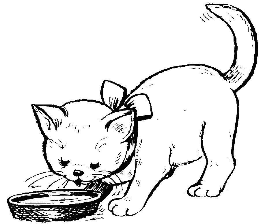 Раскраска кошка 88