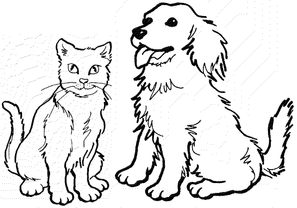 Разукрашка кошка 27
