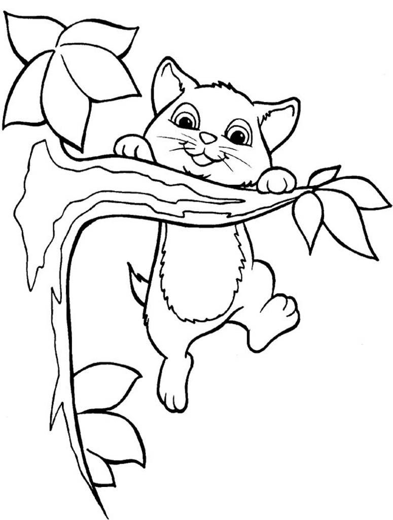 Раскраска котёнок 77