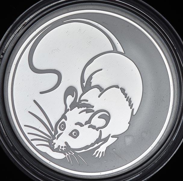металлическая крыса фото 7