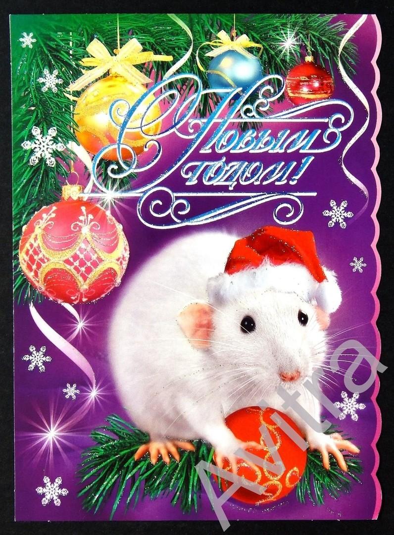 Открытка с белой крысой