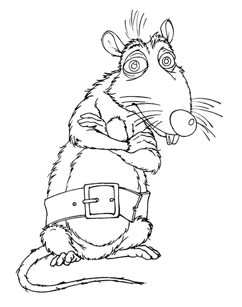 Раскраска крыса 9