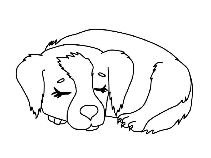 раскраска собака Andrey Eltsov Ru