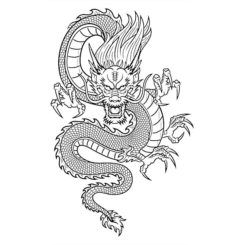 Раскраска дракон 18