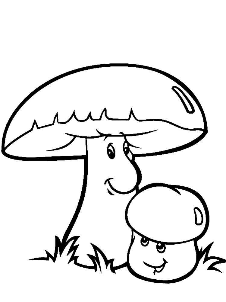 Картинки грибы | andrey-eltsov.ru