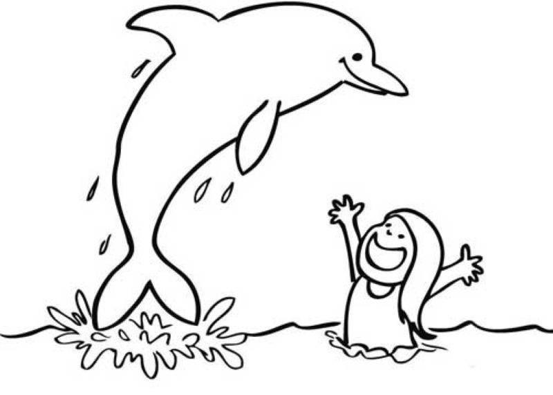 Раскраска дельфин 40