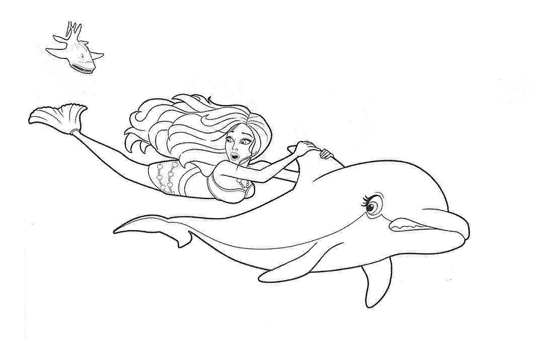 Раскраска дельфин 22