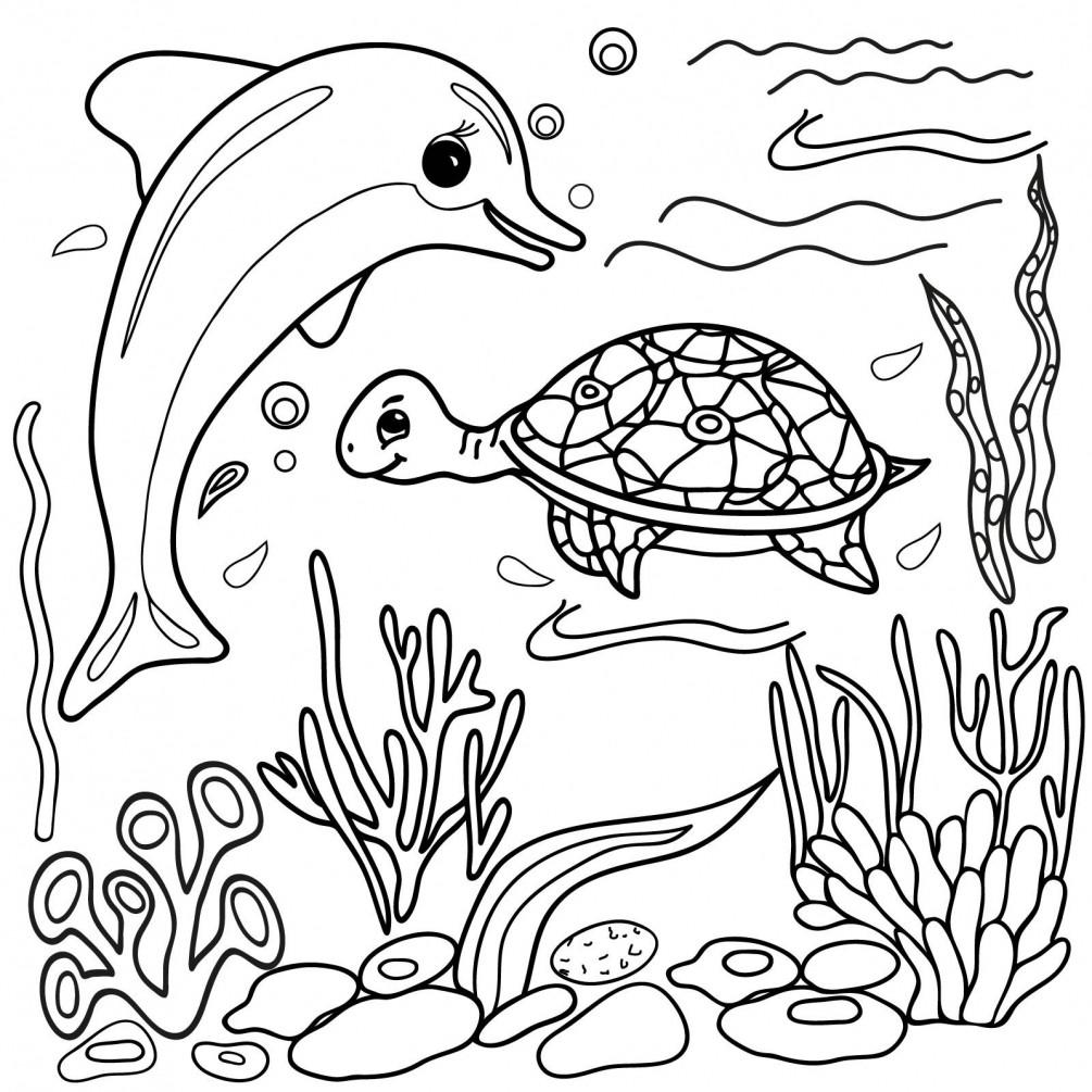 Раскраска дельфин 3
