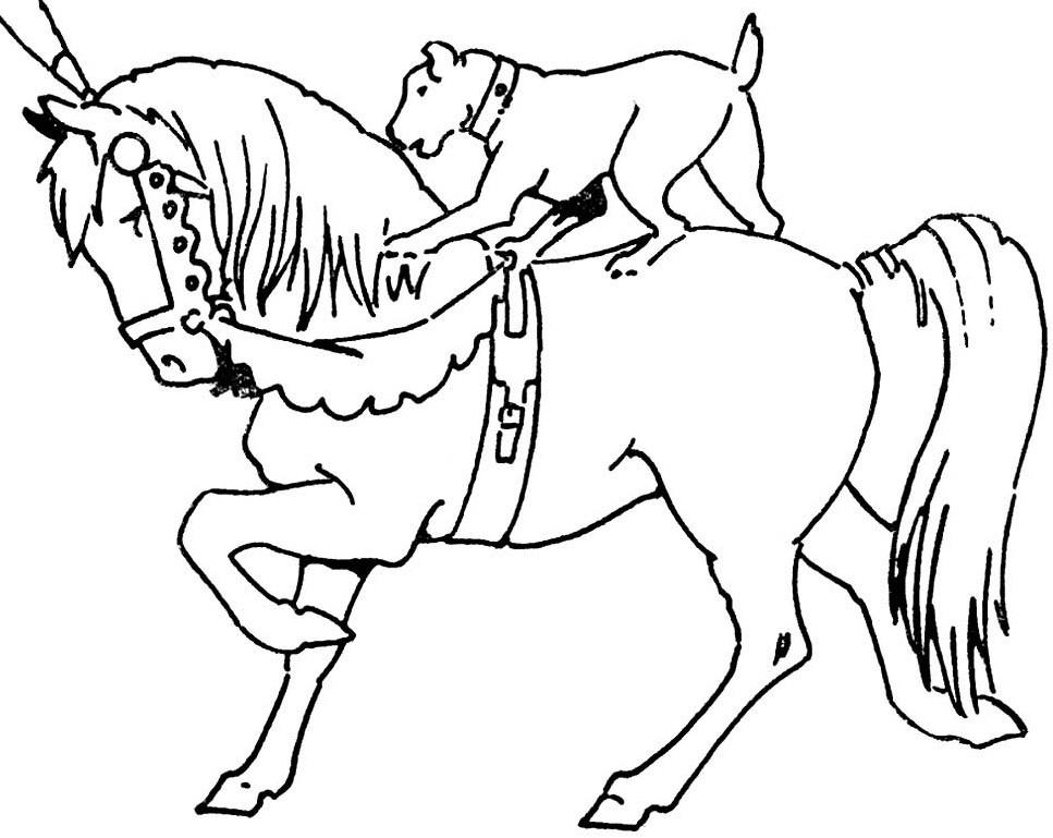 раскраска лошадь 19