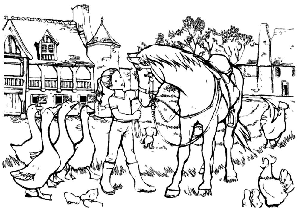 Раскраска лошадь 23